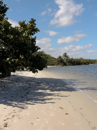 Hobe Sound National Wildlife Refuge's beach is situated at the conclusion of a road