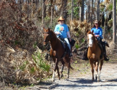 Jonathan Dickinson State Park Equestrian Activities